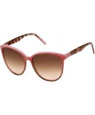 Oxydo Señoras de buey 1050-s asf 51 gafas de sol marrón rosado