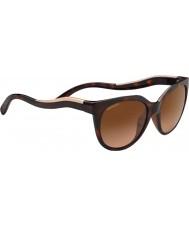 Serengeti 8572 lia tortoise gafas de sol