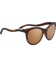 Serengeti 8569 gafas de sol valentina tortuga