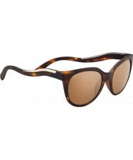 Serengeti 8574 lia tortoise gafas de sol
