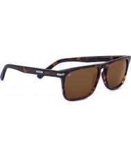 Serengeti Carlo oscuro Habana conductores de las gafas de sol
