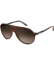 Carrera Nuevo campeón 8f8 HA Habana gafas de sol negras