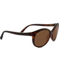 Serengeti Caterina oscuro brillante concha polarizado gafas de sol de los conductores