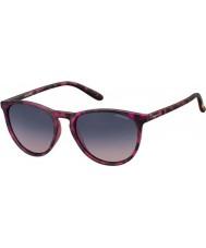 Polaroid gafas de sol Pld6003-n SRR Q2 Habana fucsia polarizadas