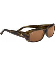 Serengeti Bianca conductores de carey franja gafas de sol