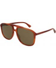 Gucci Mens gg0262s 002 58 gafas de sol
