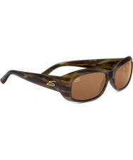 Serengeti Bianca de la concha de la raya de las gafas de sol polarizadas de los conductores