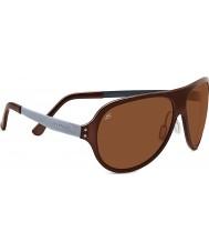 Serengeti phd conductores polarizado gafas de sol marrones Alice