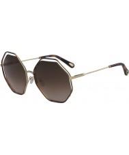 Chloe Damas ce132s 213 58 gafas de sol de amapola