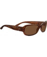 Serengeti 7911 gafas de sol de carey chloe