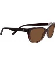 Serengeti Sophia de carey negro gafas de sol polarizadas de los conductores