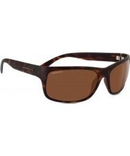 Serengeti 8300 gafas de sol de carey pistoia
