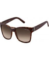 Oxydo Para hombre de buey 1032-s de las gafas de sol v08 cc de carey